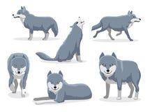 Grey Wolf Cartoon Character Vector illustration royaltyfri illustrationer