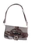 Grey women bag Stock Image