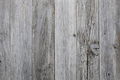 Grey wood Royalty Free Stock Photos