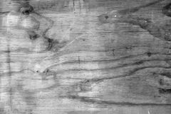 Grey wood background. Closeup of grey wood background Stock Photography