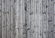 Grey wood Royalty Free Stock Image