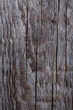 Grey wood surface with deffects Stock Images