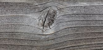 Grey wood texture. Abstract background Royalty Free Stock Photography