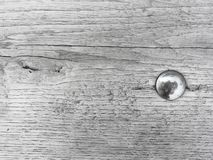 Grey wood texture background surface with old natural pattern. Vintage old wood. Old vintage wood board - rustic background with free text space royalty free stock image