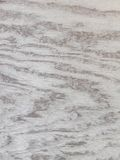 Grey Wood texture grunge background Royalty Free Stock Images