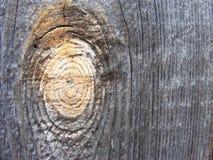 Grey wood texture Royalty Free Stock Photos