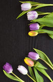 Grey wooden empty copy space background with colorful tulips Stock Photos