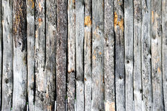 Grey Wooden fence Stock Images