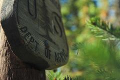 Grey Wooden Signage on Tree Trunk Royalty Free Stock Photo