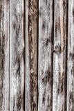 Grey wooden texture. Wooden texture with grey stripes Royalty Free Stock Photography