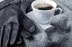 Grey wool scarf and leather gloves Stock Photos