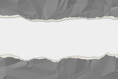 Grey wrinkled paper ripped on the white board. Royalty Free Stock Image