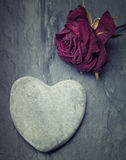 A grey zen heart shaped rock with a half dead rose on a tile backg Stock Images