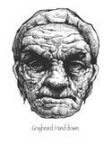 Greybeard. Hand drawn. Vector eps8. Royalty Free Stock Photo