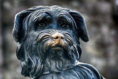 Greyfriars Bobby, Edinburgh, Scotland Stock Images