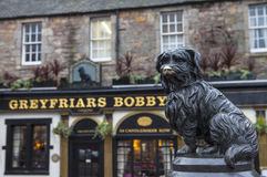Greyfriars Bobby in Edinburgh. A statue of Greyfriars Bobby situated outside the Greyfriars Public House in Edinburgh, Scotland.  Bobby was a Skye Terrier who Stock Image