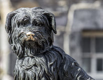 Greyfriars Bobby Stock Photos