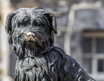 Greyfriars Bobby. EDINBURGH, UK - 24 APRIL 2016.  Greyfriars Bobby statue of famous Terrior dog Stock Photos