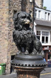 Greyfriars Bobby. Was a Skye Terrier which became known in 19th-century Edinburgh for supposedly spending 14 years guarding the grave of its owner until he died royalty free stock photo