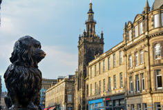 Greyfriars Bobby. (skye terrier), Edinburgh, Scotland royalty free stock photography