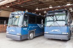 Greyhound λεωφορεία στο τελικό inToronto, Καναδάς Στοκ Εικόνες
