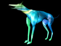 Greyhound colored 3D model 2. Crasy colored 3D model of greyhound Royalty Free Stock Image