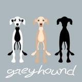 Greyhound dog set vector illustration style Flat silhouette stock illustration