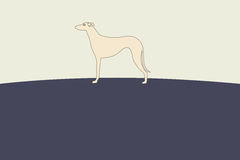 Greyhound Dog Silhouette Illustration. Simple Greyhound Dog Standing Silhouette Illustration Stock Photos