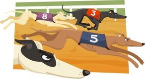 Greyhound race illustration. Greyhound Dog Race Racing Dogs,  illustration cartoons Stock Images