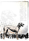 Greyhound on the vertical poster Royalty Free Stock Photos
