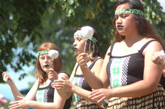 Маорийская танцулька Стоковое Изображение