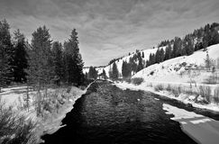 Greys River in Wyoming. Along the snowmobiling trail in Greys River, Wyoming, a tributary of the Snake River Royalty Free Stock Photos