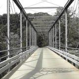Greyscale Brücke Lizenzfreie Stockfotos