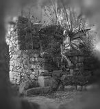 Greyscale Fairy Background. Fairy sitting in some ruins in greyscale Royalty Free Stock Image