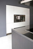 Greyscale kitchen. Interior of big modern kitchen in apartment Royalty Free Stock Photo