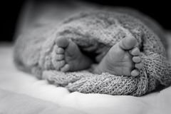 Greyscale Photo Of Human Feet Covered In Knitted Comforter Royalty Free Stock Photo