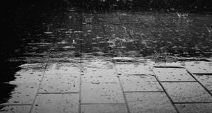 Greyscale Photo of Rain Drops Stock Photography