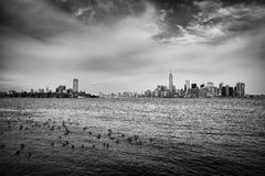 Greyscale Photography of Flock of Birds on Ocean Under Cloudy Sky Far from the City Royalty Free Stock Photography