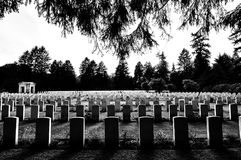 Greyscale Photography of Tombstones in a Cemetery Royalty Free Stock Images