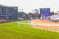 Greyville Grass Poly Synthetic Tracks Stock Image