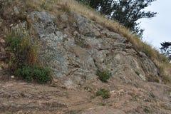 Greywacke skała dźwignie up na Mt Davidson San Fransisco, 1 obrazy stock