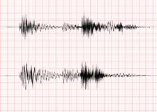 Gráfico de la onda del terremoto Fotografía de archivo libre de regalías