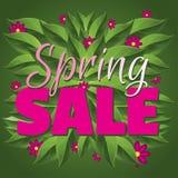 Gráfico verde e cor-de-rosa da venda da mola Fotos de Stock Royalty Free
