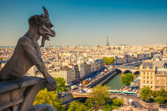 Gárgola en Notre Dame Cathedral Imagenes de archivo