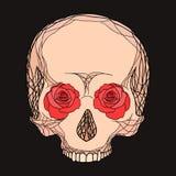 Gribouillez l'illustration d'un crâne humain avec des roses Images libres de droits