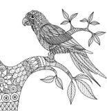 Gribouillez la conception du perroquet sur la branche pour livre de coloriage adulte illustration de vecteur