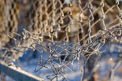 The grid of the fence covered with frost on a frosty morning, cold snap royalty free stock photo