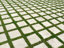 Grid of grass and paving stones. Grid pattern made of grass and concrete paving stones stock photography