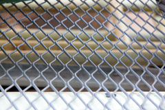 Grid mesh. Stock Photography