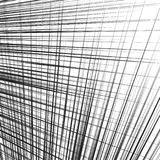 Grid, mesh of dynamic irregular lines. Abstract geometric trelli Royalty Free Stock Image